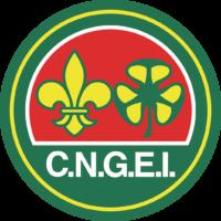logo cngei